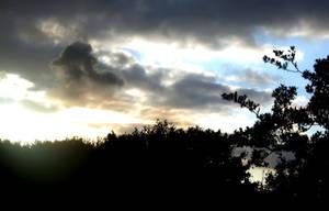 Skyline Scenery by Amy-Smith