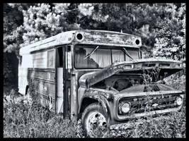 Bus BW by cjheery