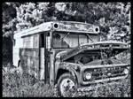 Bus BW