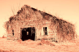 Dry Barn by cjheery
