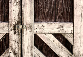 Shed Door by cjheery