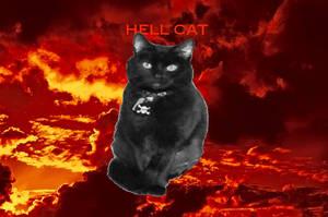 Harley, Hell Cat by cjheery