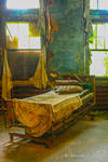 Abandoned Mental Asylum, Bed