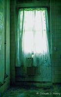 Abandoned Mental Asylum, Curtain by cjheery