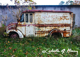 Dairy Truck by cjheery