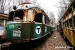 Trolley Graveyard - Green And Yellow Cars