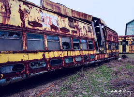 Trolley Graveyard - Upside Down II by cjheery