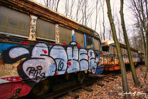 Trolley Graveyard - Graffiti Train II by cjheery