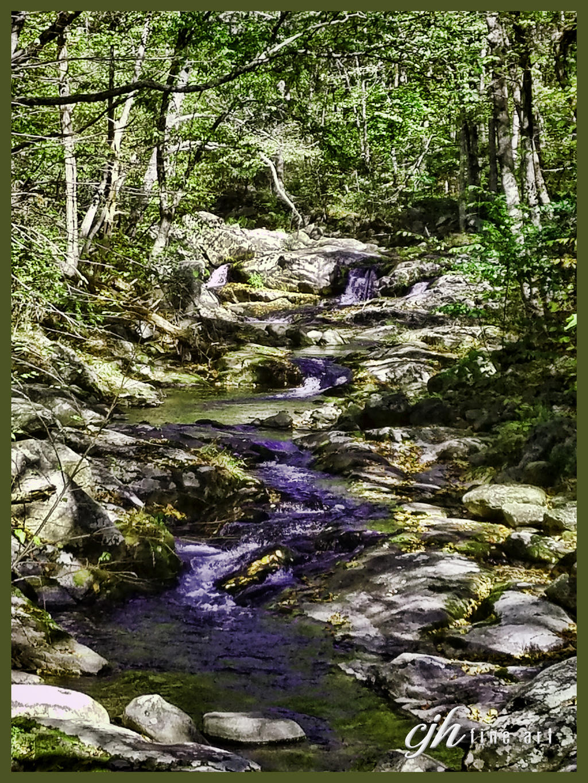 Rapidan River, Virginia II by cjheery