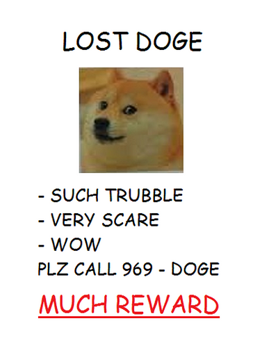 Lost Doge By TillyXCX