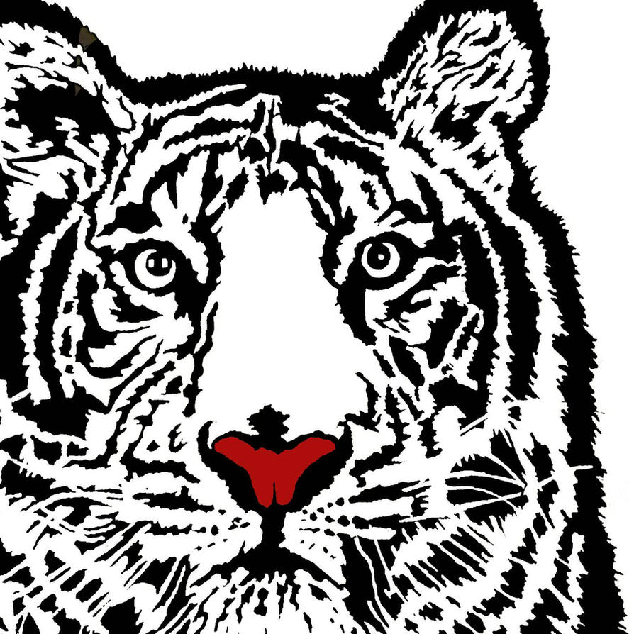 Tiger by Organisedcha0s