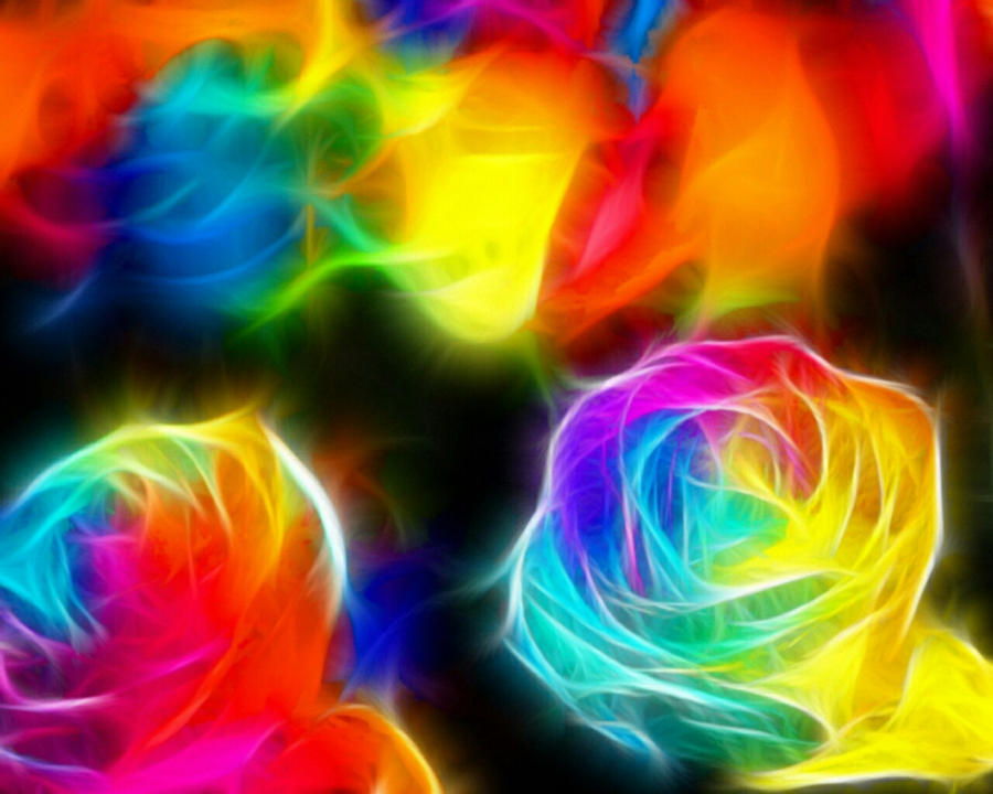 Rose color rainbow by terra k on deviantart for How to color roses rainbow