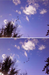 Four Plane Formation by ZeroFangirl-Mu