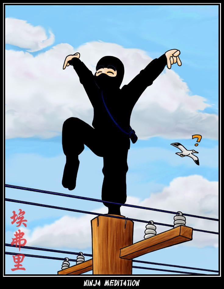 Ninja Meditation by avary