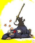 Hayabusa Ninja Kendo Cat