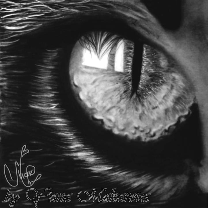 cat's eye by Makarova17