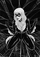 Black Cat by gregohq