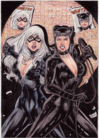 Blackcat And Catwoman by gregohq