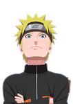 Naruto Hero Of Konoha
