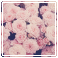 {F2U} Vintage Flowers by attackdogs