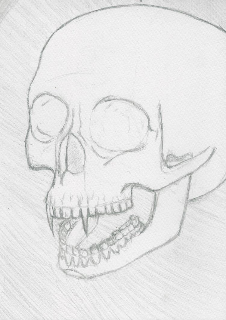 vampire skull by wtomil