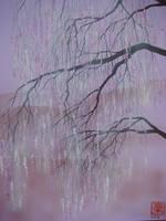 Cherry Blossom 4 by martoo1973