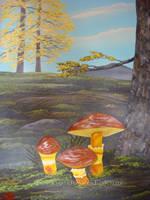 Mushrooms by martoo1973