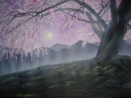 Cherry Blossom 11 by martoo1973