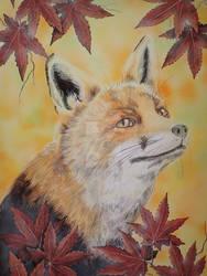 Fox and Momiji