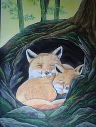 Fuchs3