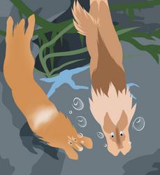 {Toko} Diving | Payment | desertfloraa 1 by Rocheryn