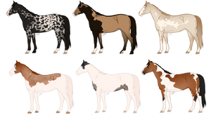 {Adopts} NYP: Natural Horse Designs CLOSED
