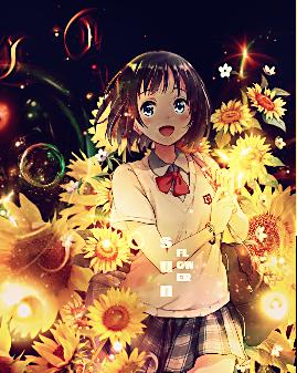 Sunflower by D-XKanon