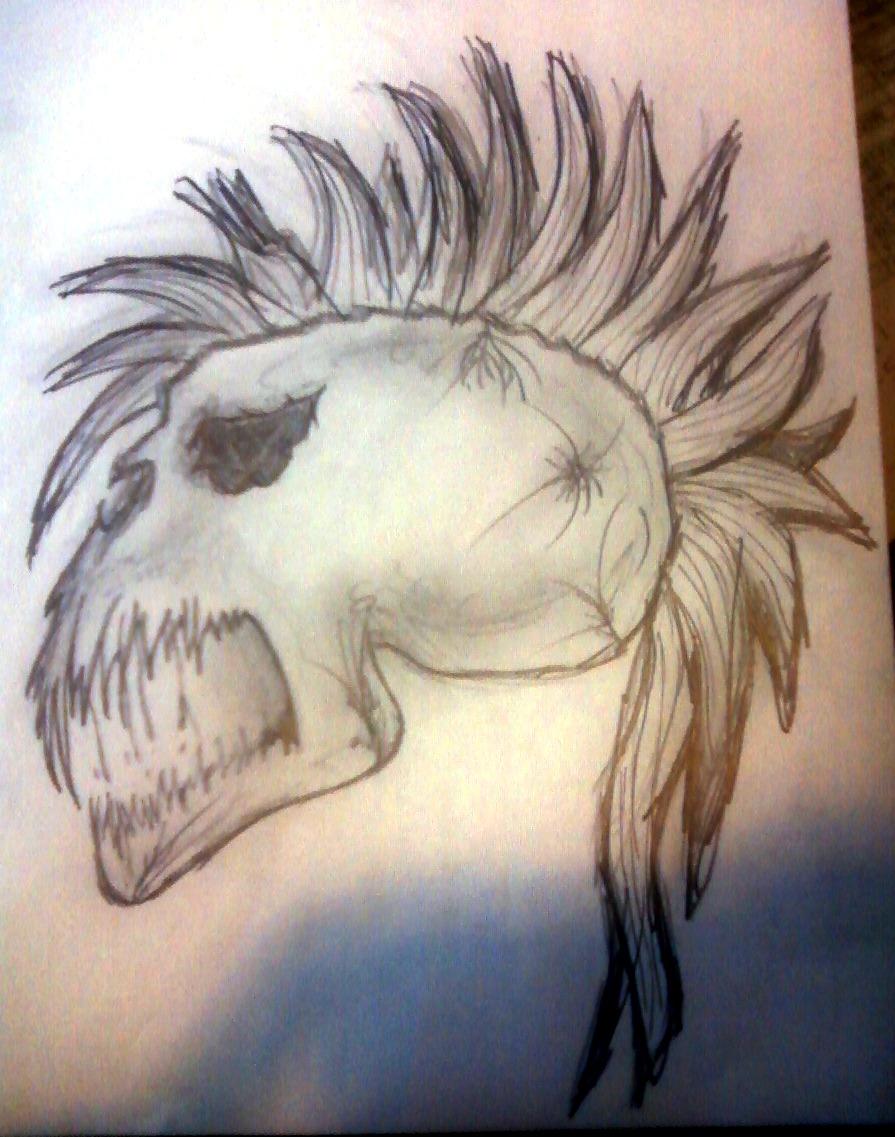 Skull with Mohawk by Kayleighmachelle on DeviantArt