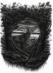 Red Deer Spirit by dwarfeater