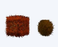 Furry Stuff was Hairy Ball by chrishillman