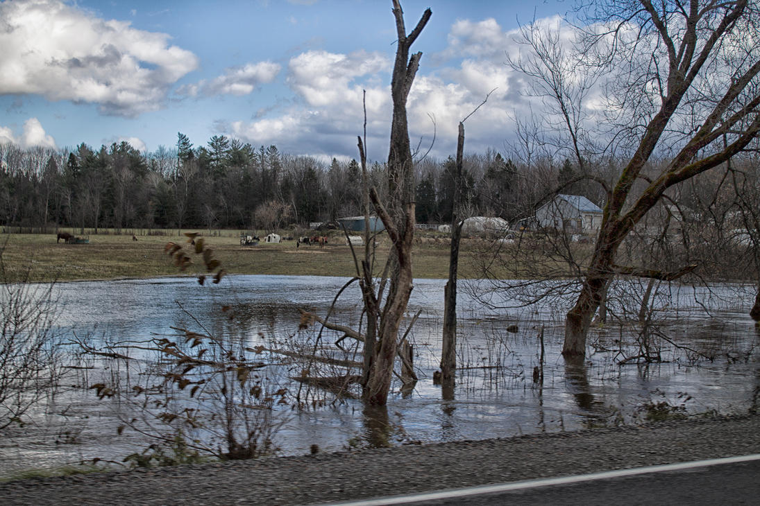 Minor floods by jonathanfaulkner