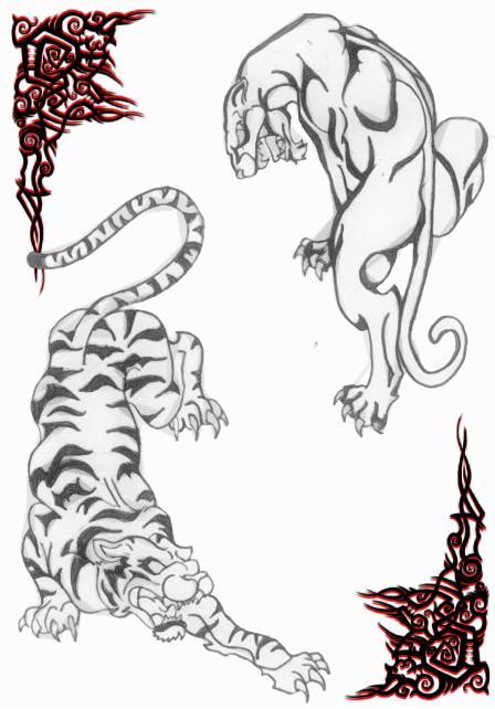 Big Cats By Anghellic7 On Deviantart