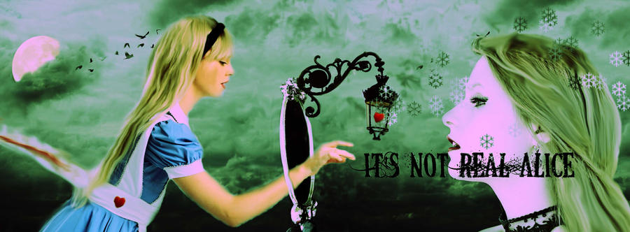 It's Not Real Alice by wdnest