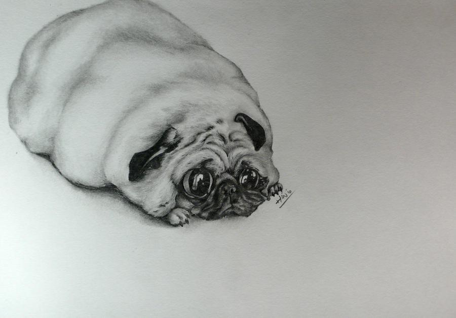 Fat Pug -- Finish By Hin82 On DeviantArt