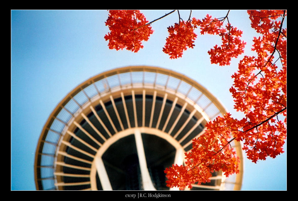 Fall Space Needle by exorp