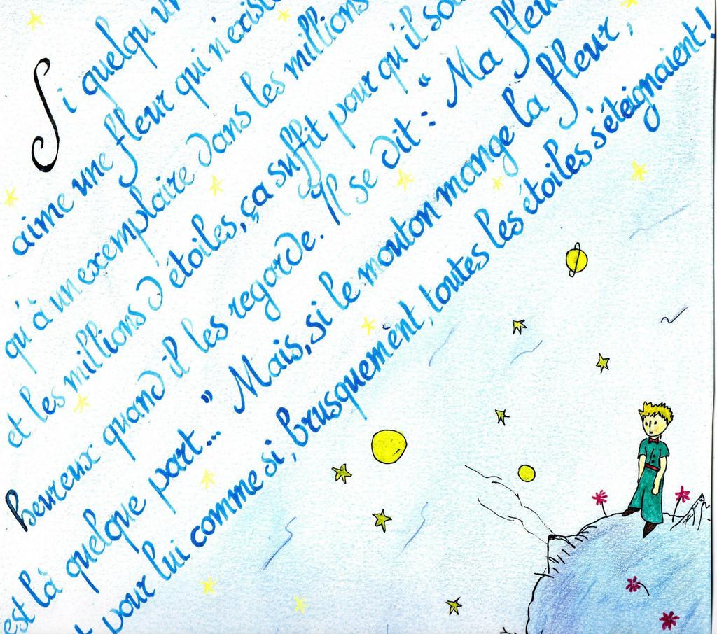 Citation Petit Prince By Elrawien On Deviantart
