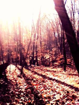 Fall hike by Zaranii