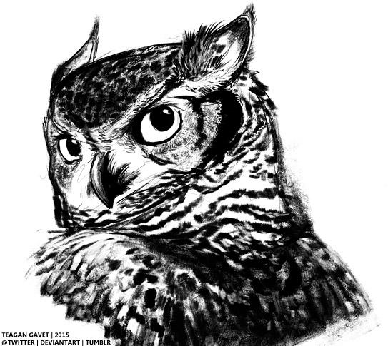 Owl Thing by teagangavet