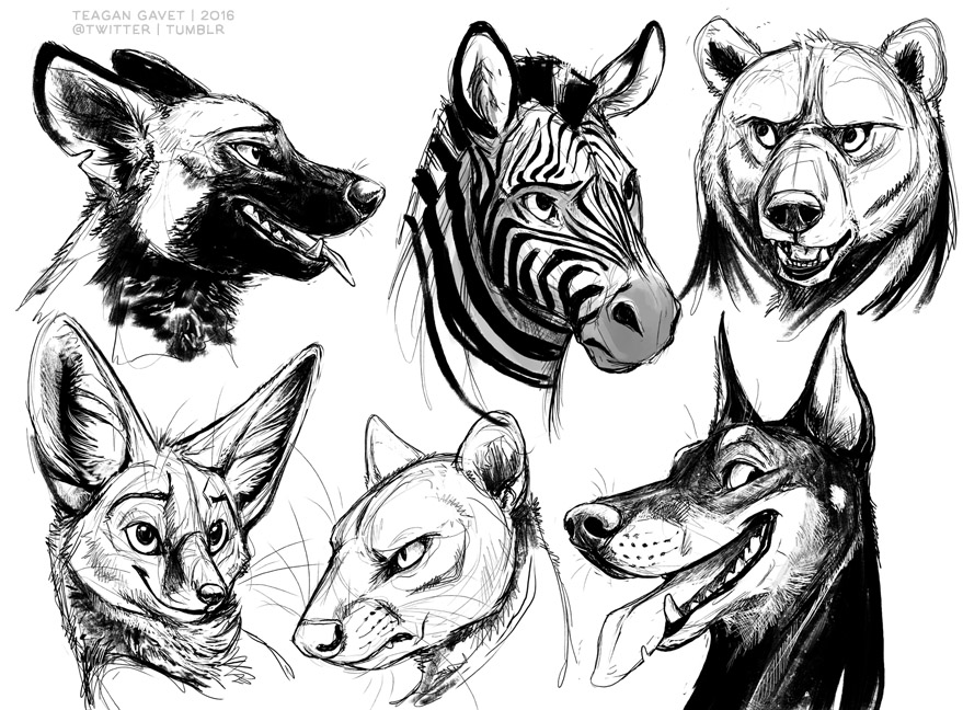 Sketches 2-6-16 by teagangavet