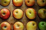 fuji apple bake 2 by courey