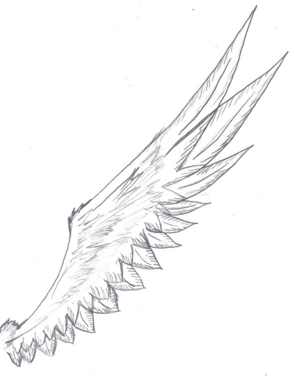 Wing Tattoo By Animal and anime lvr On DeviantArt