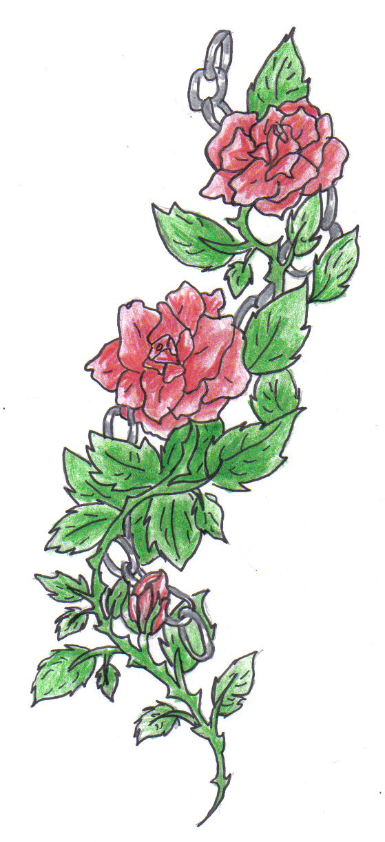 Rose Vine Drawing Rose vine by animal-and-anime-Rose Vine Drawing Tattoo