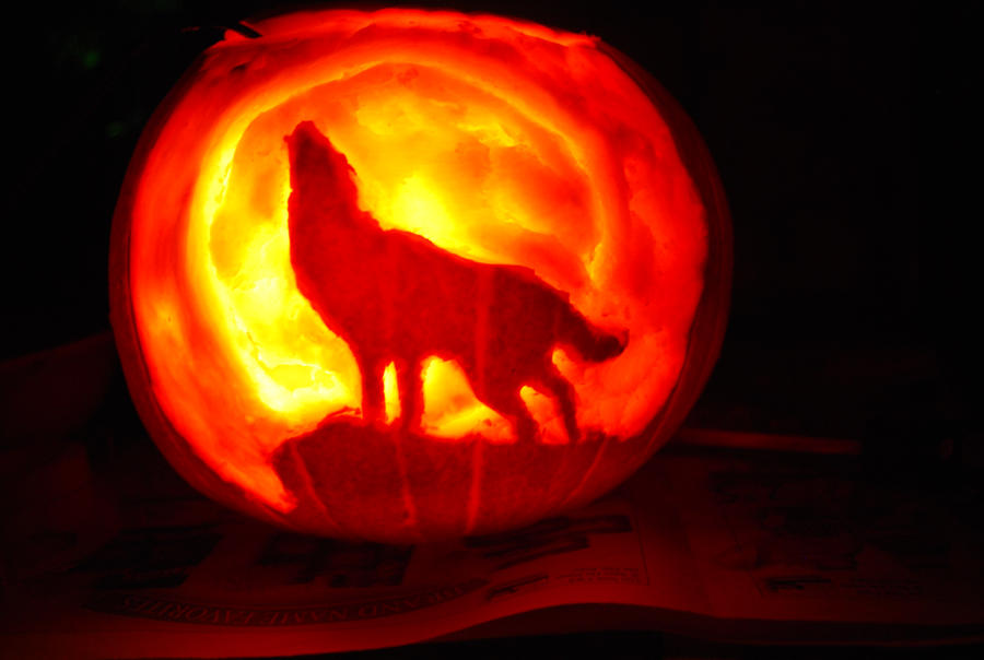 wolfs rain pumpkin by Animal-and-anime-lvr