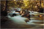 Roaring River V